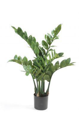 Kunstplant Zamiculcas 70 Cm