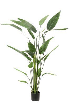 Heliconia Kunstplant M
