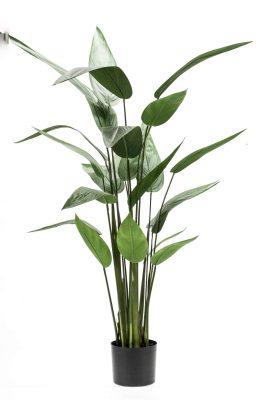 Heliconia Kunstplant S