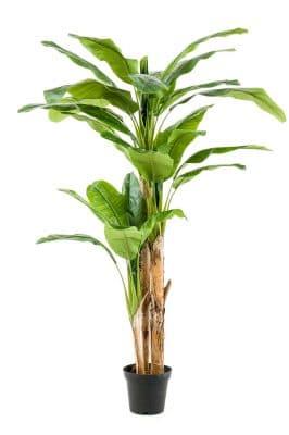 Kunst Bananenplant 210 Cm