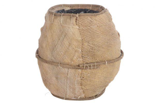Cocos Mand