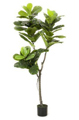Kunstplant Ficus Lyrata