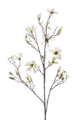 Kunsttak Magnolia