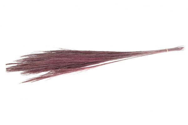 Droogbloem Broom Grass Roze 2 Bundels