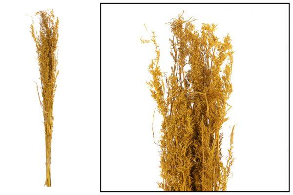 Droogbloem Grassen Oker Geel 2 Bundels