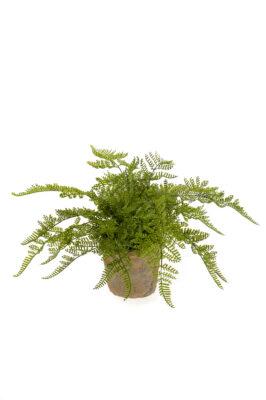Kunstvaren Plant In Verweerde Pot