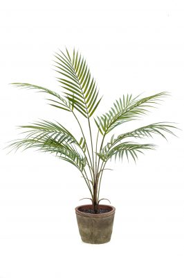 Kunstplant Palm In Een Stenen Pot