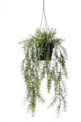 Kunst Hangplant Asparagus (2 Stuks)
