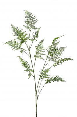Kunsttak Asparagus (2 Stuks)