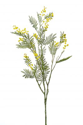 Kunsttak Mimosa Geel