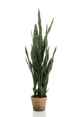 Kunstplant Sanseveria