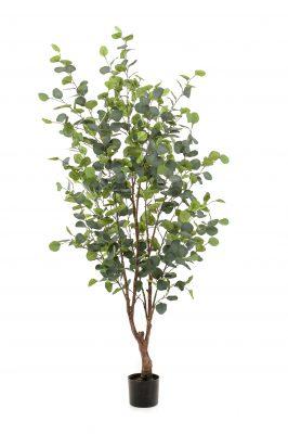 Kunstplant Eucalypthus 140 Cm