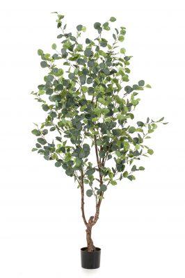 Kunstplant Eucalypthus 180 Cm