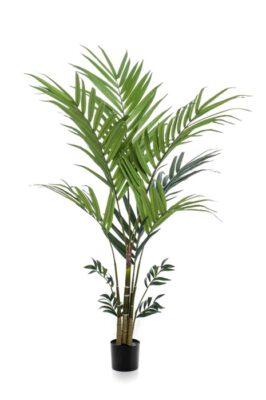 Kentia Kunstplant XL 180 Cm