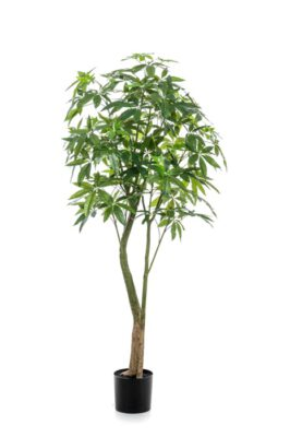 Paschira Kunstpalm Plant 180 Cm