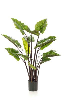 Colocasia Kunstplant