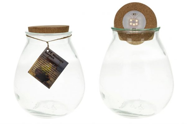 Glazen Pot  Voor Plantjes Met Led Verlichting L