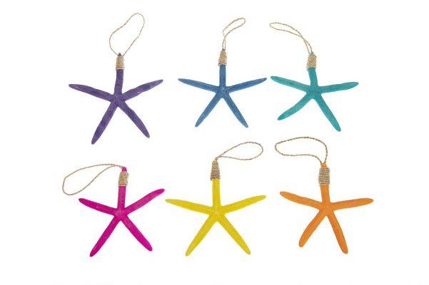 Kleurige Zeester Hangers 6 Stuks