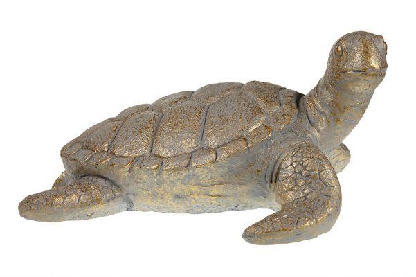 Goudkleurige Schildpad XXL